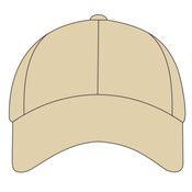 Curved Bill Brushed Twill Hat